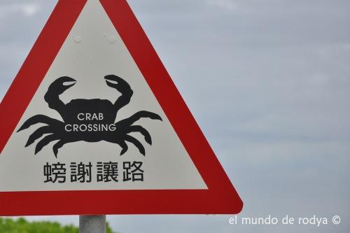 paso cangrejos