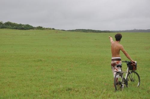 kenting, kenting national park, parque nacional, carretera, tifon, ciervos, bike, bici, taiwan, pingtung